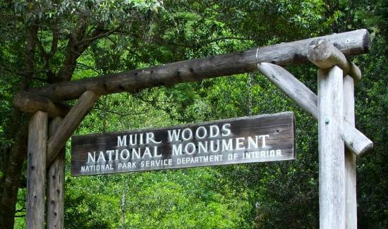 Sign Entrance Picture Of Muir Woods National Monument