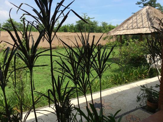 Balangan Garden Bungalow : Вид из номера