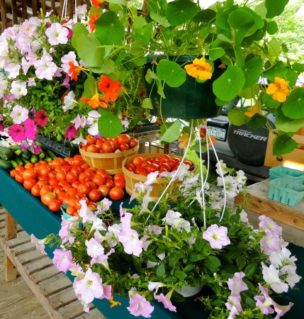 Ithaca Farmers Market: Lot's of choices!