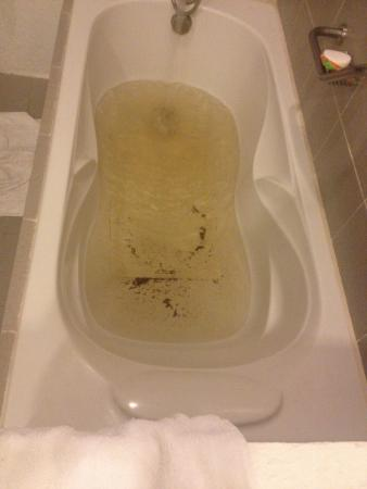 Almont Inland Resort : This is the water from this resort beware very unhealthy