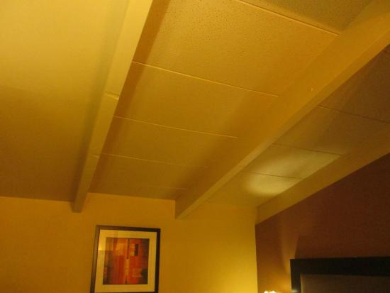 Econo Lodge Clarks Summit: More of that COOL ceiling!