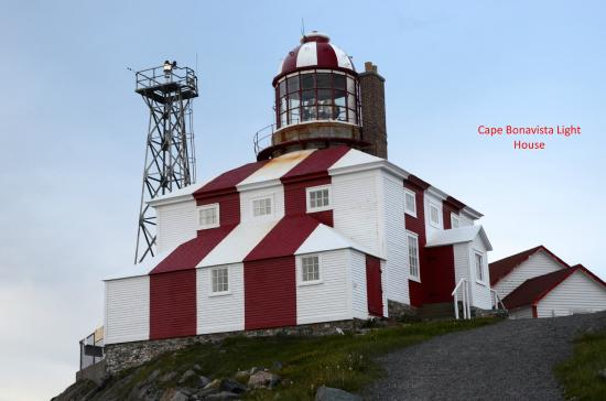 Abbott's Cape Shore Bed and Breakfast: Cape Bonavista Light House