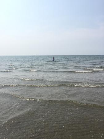 Walnut beach. In July. During Mid tide