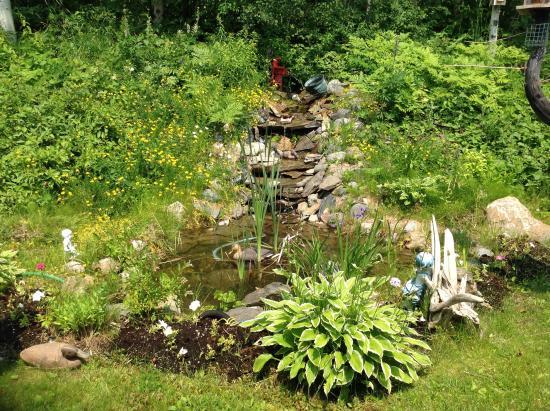Virginiatown, Canada: Backyard Waterfall
