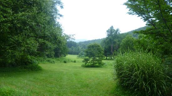 The Inn at Sugar Hollow Farm: View from Woodland bedroom