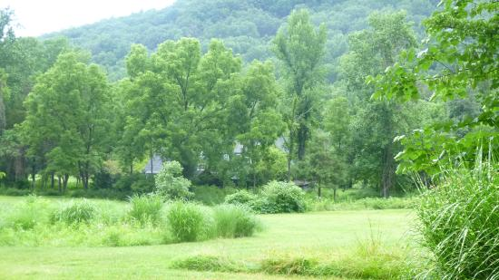 The Inn at Sugar Hollow Farm : View from Woodland Bedroom