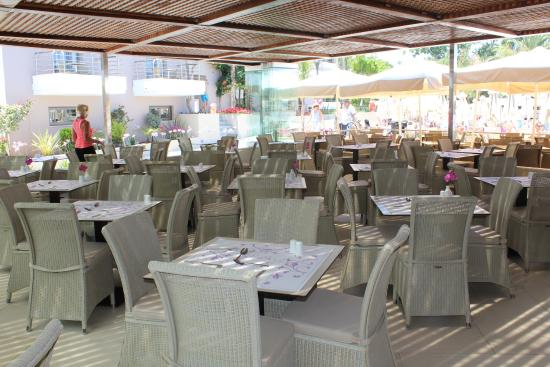 kart over platanias Restauranten   Picture of Porto Platanias Village Resort  kart over platanias