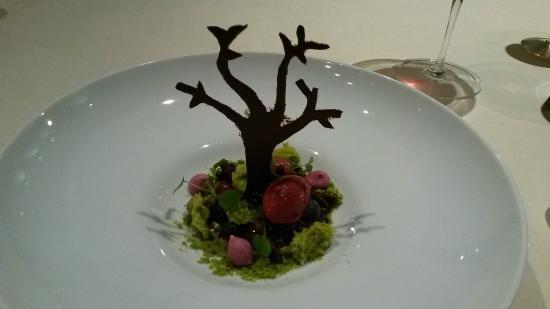 """OLIVO - Gourmetrestaurant: """"Der Waldboden"""" Beere/Pistazie/Käsekuchencreme"""