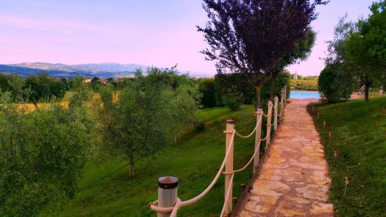 Cottage Degli Ulivi: to the pool