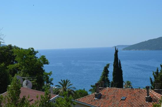 Guest House Tomanovic: sea view
