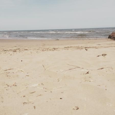 Cap-Pele Village : Perfect day