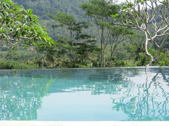 Villa Shantiasa: Pool