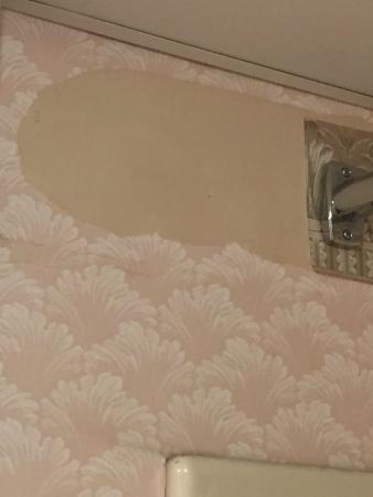 Colonnade Resort : Tear in wallpaper in bathroom