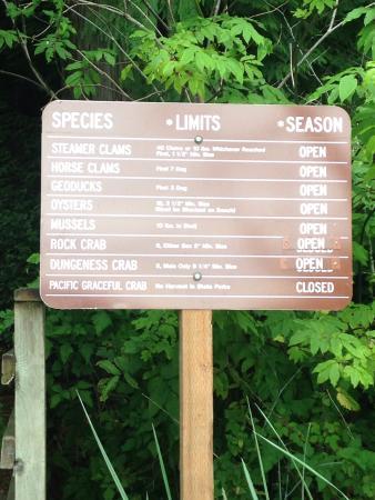 Harstine Island State Park