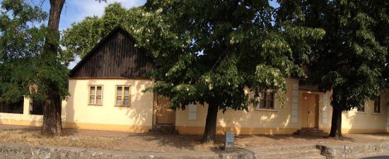 Sremska Kamenica, Sérvia: Jovan Jovanović museum-not Belgrade museum