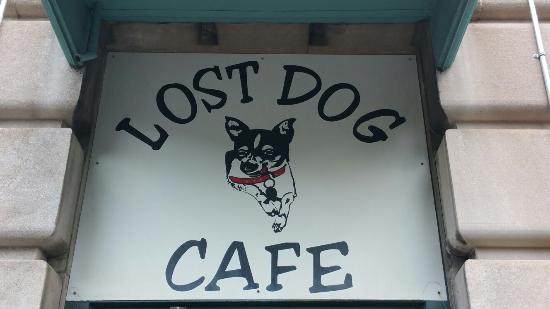 ‪Lost Dog Cafe‬
