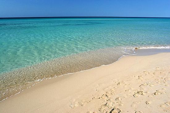 Pescoluse, Italia: riva maldive