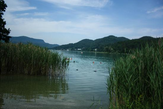 Sankt Egyden, Austria: lake near the hotel