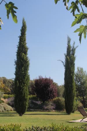 Villevieille, France : gepflegte Außenanlage