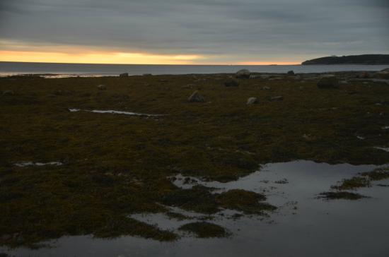 Ocean Acre Inn: Sunset at Rocky Harbour