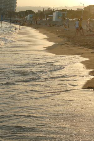 Residence Veles Plage: spiaggia di fronte