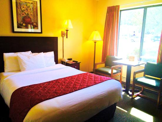 Econo Lodge - Mayo Clinic Area: Single Queen Guest Room