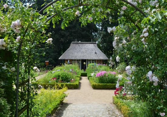 Loki Schmidt Garten Botanical Garden