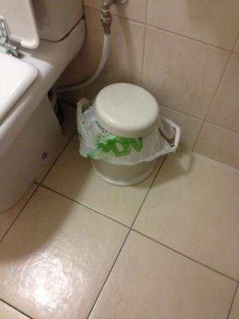 Arena Hotel: Standard bin liner - Supermarket carrier bag ?
