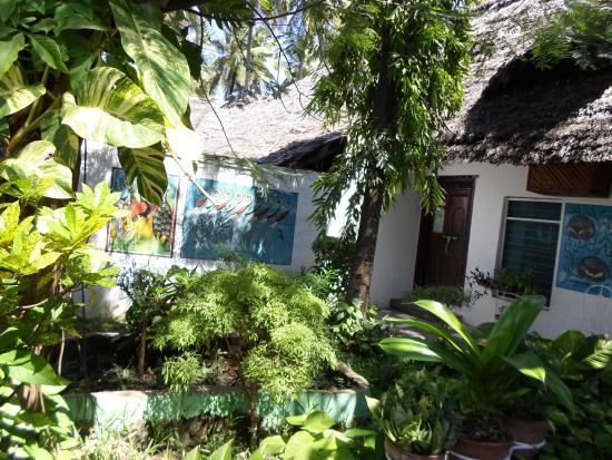 Palm Beach Inn: lovely garden
