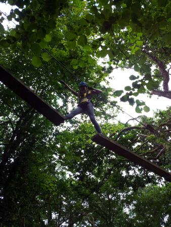 Killarney High Ropes Course
