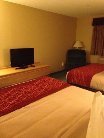 復古之谷旅館照片