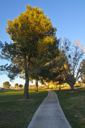 Green Tree Inn & Extended Stay Suites: Golf course View