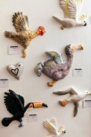 Frames Gallery: Fabulous birds by Mark Haillay