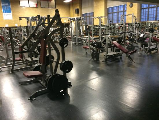 The very well equipped and big gym weights room and cardio room