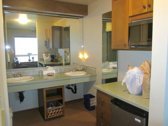 Overleaf Lodge & Spa: Spacious sink area and microwave and refrigerator