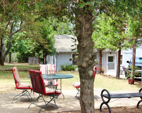 Grass Valley, Kalifornia: Sitting area under the trees