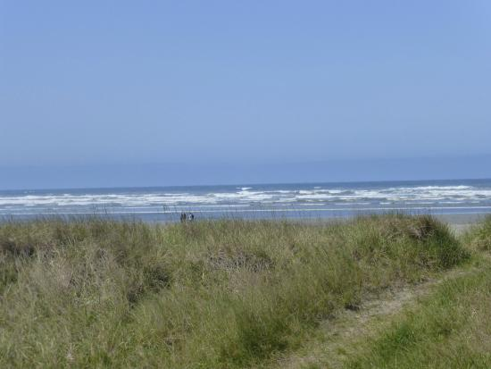 Pacific Beach State Park: Great beach walking!