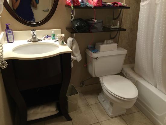 Holiday Inn East Windsor - Cranbury Area: bathroom of room #311
