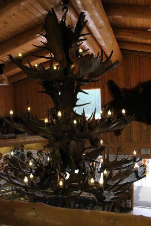 Tok, AK: Moose antler chandelier