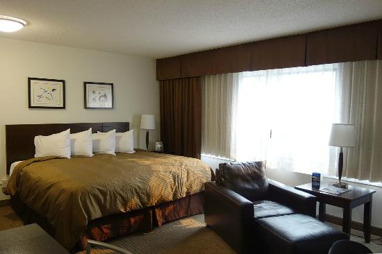 Place Louis Riel Suite Hotel: Really nice room