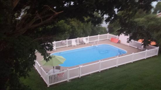 Maple Hill Bed and Breakfast : Pool