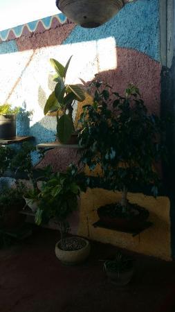 Hostal Bonsai: La vista a la ciudad de Santa Clara desde la terraza del Bonsai un regalo simple pero inmenso.