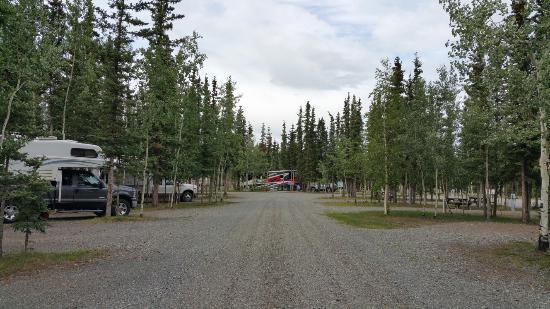 Tok, AK: Campground