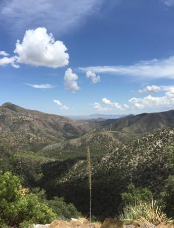 Arizona: Chiricahua Mountains
