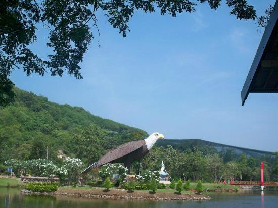 Chainat bird park: นกตัวใหญ่มาก