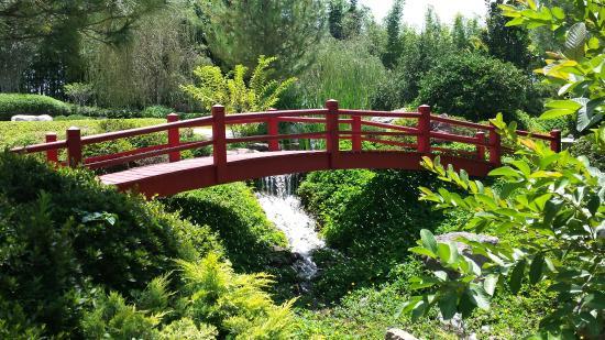 Un lugar incre ble muy cerca de cuernavaca picture of - Cercas para jardin ...
