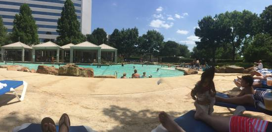 Awesome pool picture of sheraton arlington hotel arlington tripadvisor for Hotels in arlington tx with indoor swimming pool