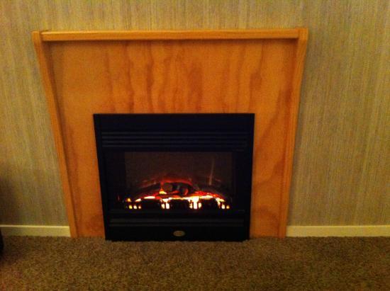 Bushland Park Lodge & Retreat: Warming fire