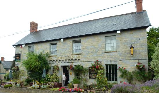 Warm Welcoming Dog Friendly And Lovely Food The Greyhound Inn Taunton Traveller Reviews
