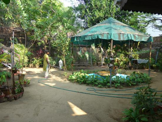 Walton's Home Stay: jardin
